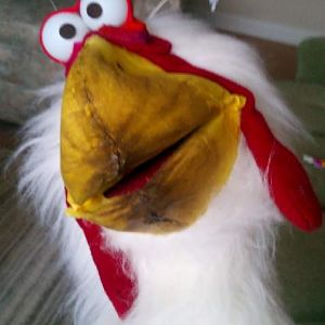 chicken puppet