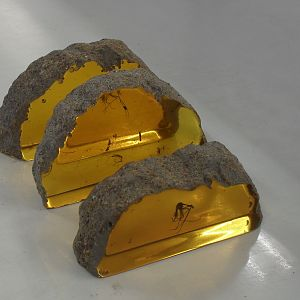 Jurassic World amber slices seen in the cloning lab.