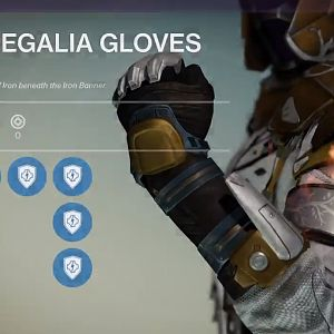 Iron regalia gloves